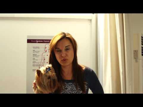 Hypoxi отзиви-Соня Марковска